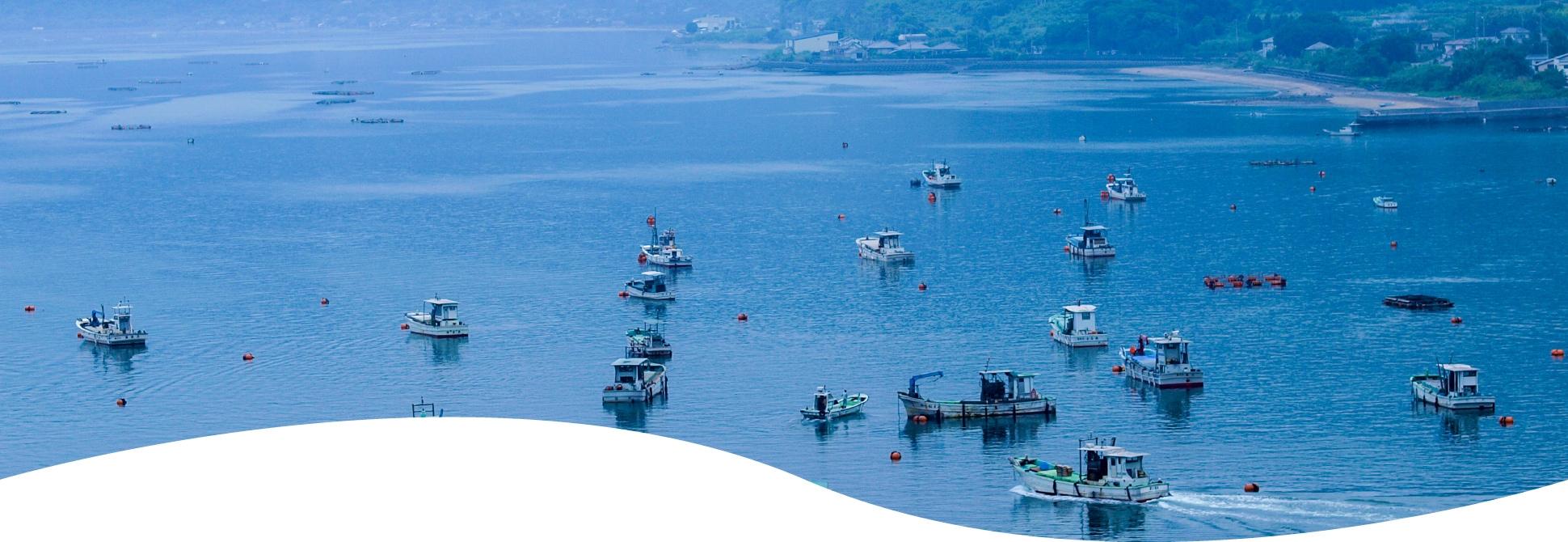 錦江湾に浮かぶ漁船
